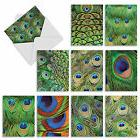 M2003 FANCY FEATHERS: 10 Assorted Blank Note Cards w/Matchin