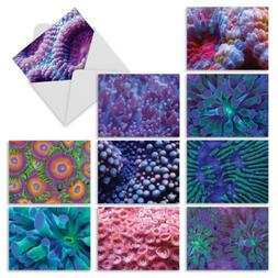 M3103 UNDER THE SEA: 10 Assorted All-Occasion Note Cards w/M
